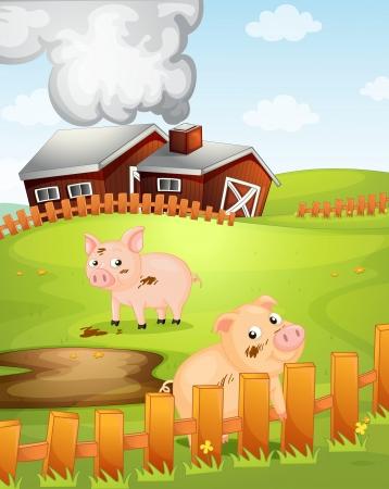 granero: ilustraci�n de dos cerdos de la naturaleza