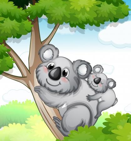 coala: ilustraci�n de un oso que se sienta en �rbol en la naturaleza Vectores