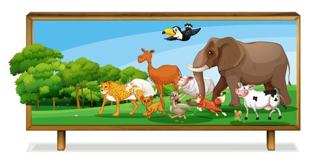 illustration of Animals in jungle on a board Vector