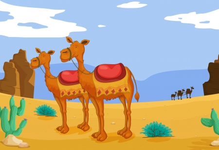 cactus desert: illustration of a group of camels in desert