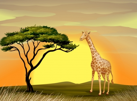 lanscape: illustration of a giraffe under the tree