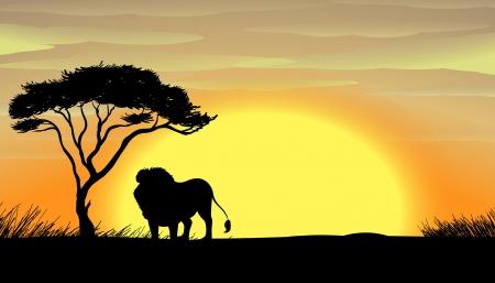 lioness: illustration of a lion under tree in dark Illustration