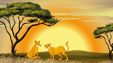 illustration of a leopard under the tree Vector
