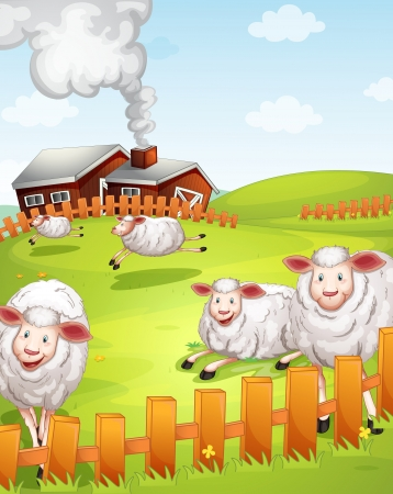 domestic scene: illustration of sheeps in the farm near the house Illustration