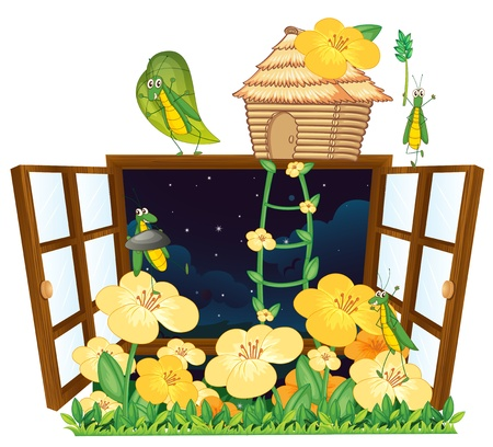 illustration of grasshopper, bird house and window on white Stock Vector - 14922264