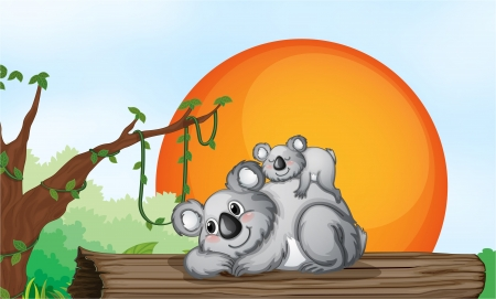 illustration of two grey bears resting on a wood Stock Vector - 14922822