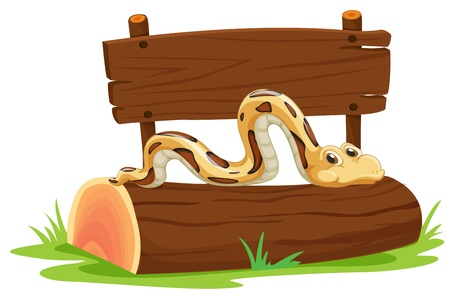 amazon forest: Illustration of a snake on a log