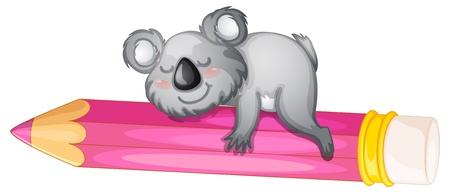 koalabeer: illustratie van een beer slapen op potlood op wit