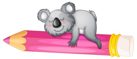 illustration of a bear sleeping on pencil on white Vector