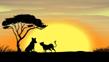 setting sun: illustration of tiger and cub in a beautiful nature