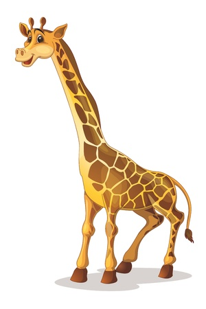 cartoon nose: Illustration of a cute giraffe