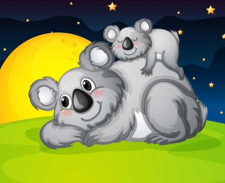 illustration of two bears resting in the night Vector