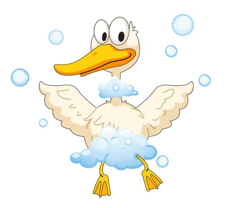 wild duck: illustration of duck and foam on a white background Illustration