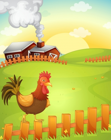 rooster at dawn: illustration of a cock in the farm Illustration
