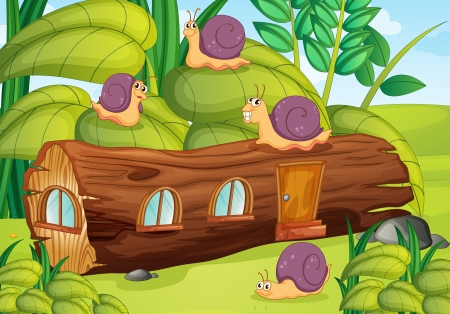 illustration of snails and house in a beautiful nature Vector
