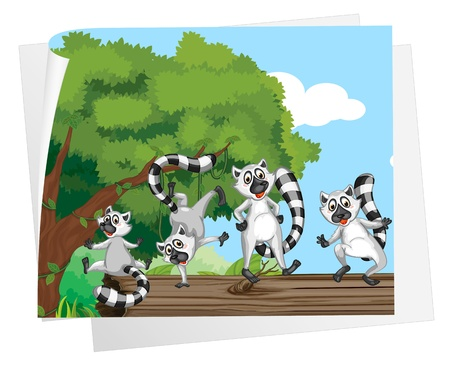 Illustration of lemurs on a log Vector