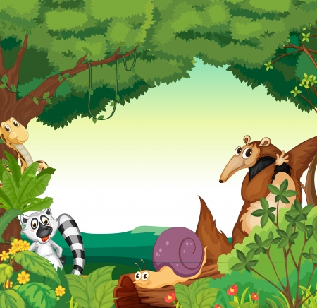 primate: Illustration of a jungle scene with various animals