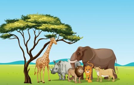 the national flag of kenya: Ilustración de los animales africanos en sabana
