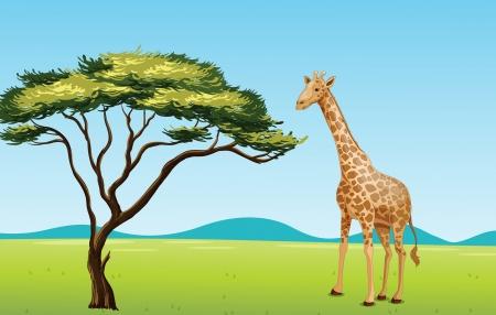 Ilustración de la escena africana con la jirafa