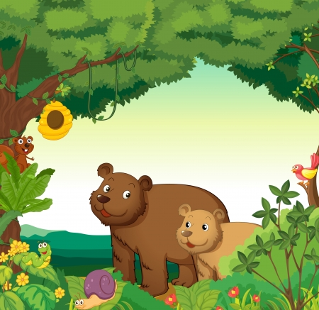 forest clipart: Illustration of a forest scene with different animals