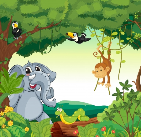 jungle cartoon: Ilustraci�n de una escena del bosque con diferentes animales