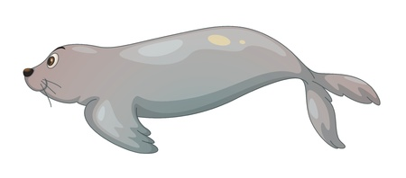 ilustration of a seal fish on a white background Vector