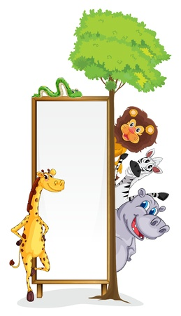 white background giraffe: illustration of various animals and board on a white