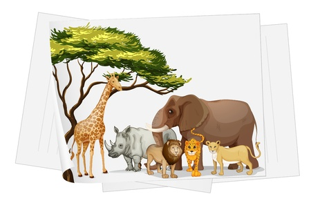 large group of animals: ilustraci�n de los animales en la selva en un papel sobre un fondo blanco