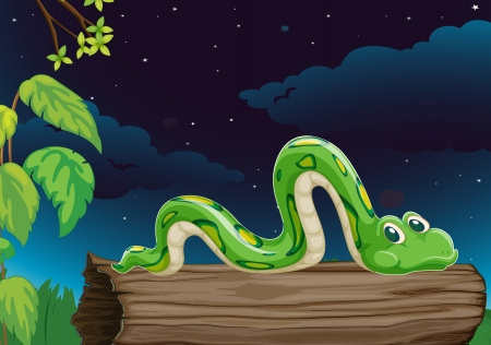 illustration of a snake on a wood in dark night Vector