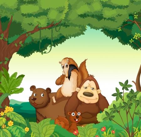 ardilla: ilustraci�n de diversos animales en el bosque