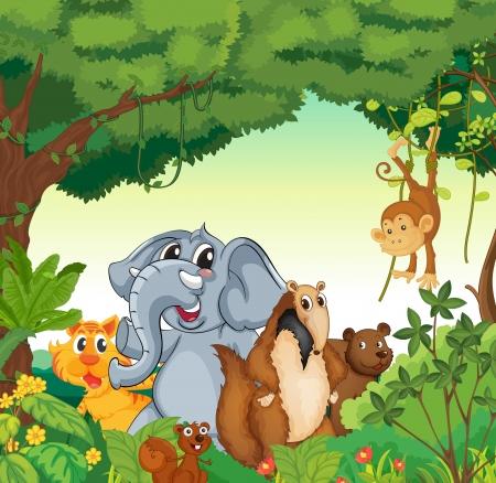 selva caricatura: ilustraci�n de diversos animales en el bosque