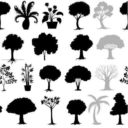 shrubs: illustration of various trees on a white background