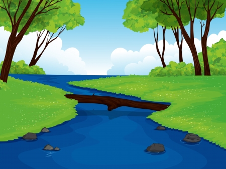 lake of the woods: illustration of a beautiful landscape nature view