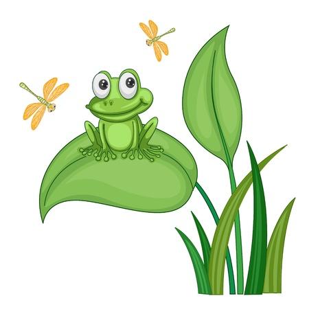 illustration of green frog sitting on a bush on white Illustration