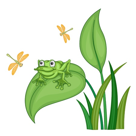 illustration of a green frog on a bush on white background