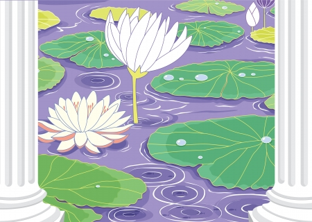 illustration of a pond white lotus flowers Stock Vector - 15401885