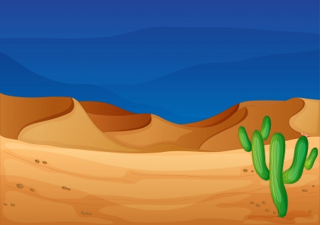 cactus desert: illustration of a desert in a beautiful nature