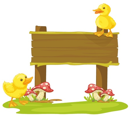 chicks: illustration of a board and duck on a white background