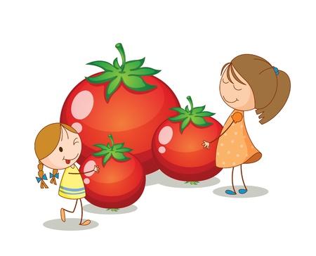 tomate de arbol: ilustración de las niñas y los tomates sobre un fondo blanco