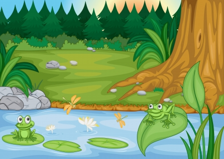 river bank: illustration of two frogs in beautiful nature