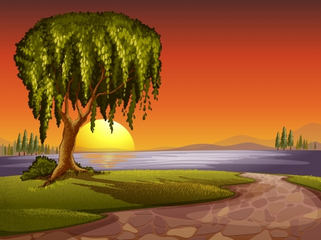 sunset lake: illustration of tree in a beautiful nature Illustration