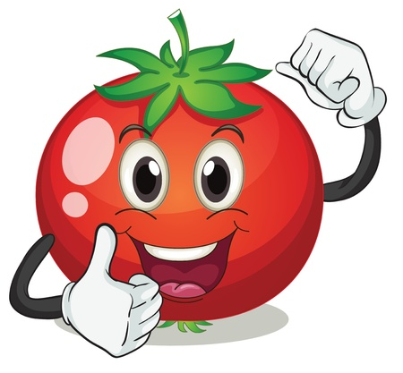 cartoon food: illustration of tomato on a white background Illustration