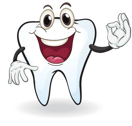 dientes caricatura: Ilustración de diente en un fondo blanco