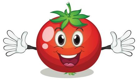 illustrazione di pomodoro su uno sfondo bianco Vettoriali