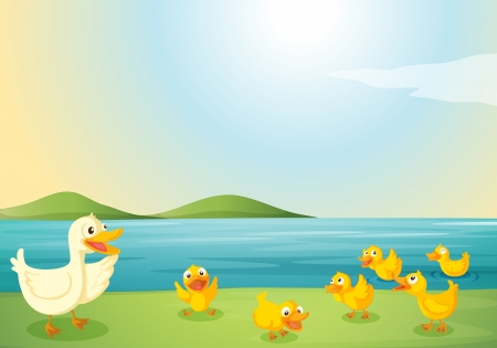 flowing river: illustration of ducks in a beautiful nature