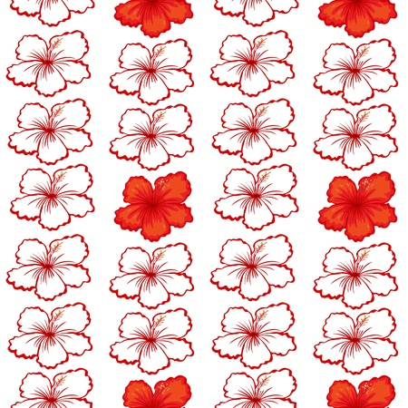 detailed illustration of a red hibiscus flowers on white
