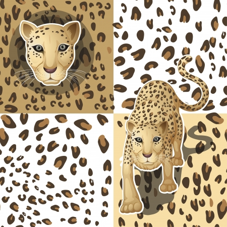 illustration of a cheetah on a white background Vector