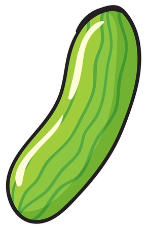 illustration of cucumber on a white background Stock Vector - 15667560