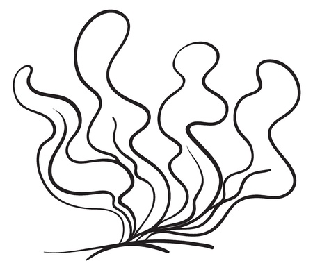Detailed Illustration Of A Clipart Of The Plant Royalty Free
