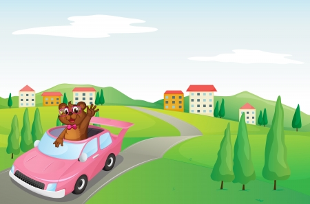 illustration of a baby cub in a car on white Vector